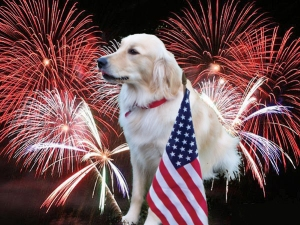 fireworks PJ sm