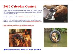 2015 contest announcement